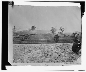 Antietam, Maryland. Battlefield on the day of battle (by Alexander Gardner, 1862 Sept. 17; LOC: LC-DIG-cwpb-01162)