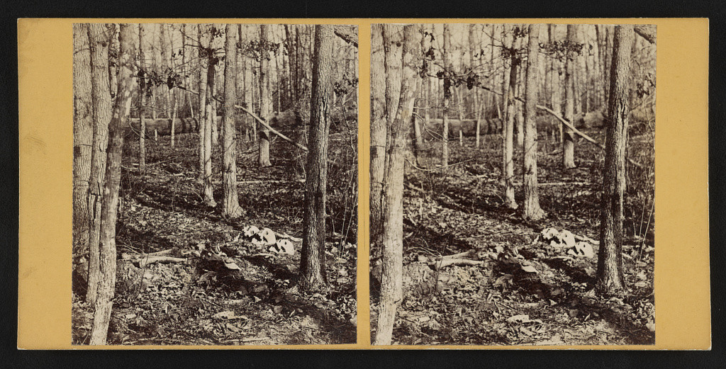 Soldier's graves near cemetery no. 2 (Wilderness) (by G. O. Brown,  Baltimore, MD : American Scenery (Stereoscopic) 267 West Lexington St., [1865]; LOC: http://www.loc.gov/pictures/item/2015647109/)