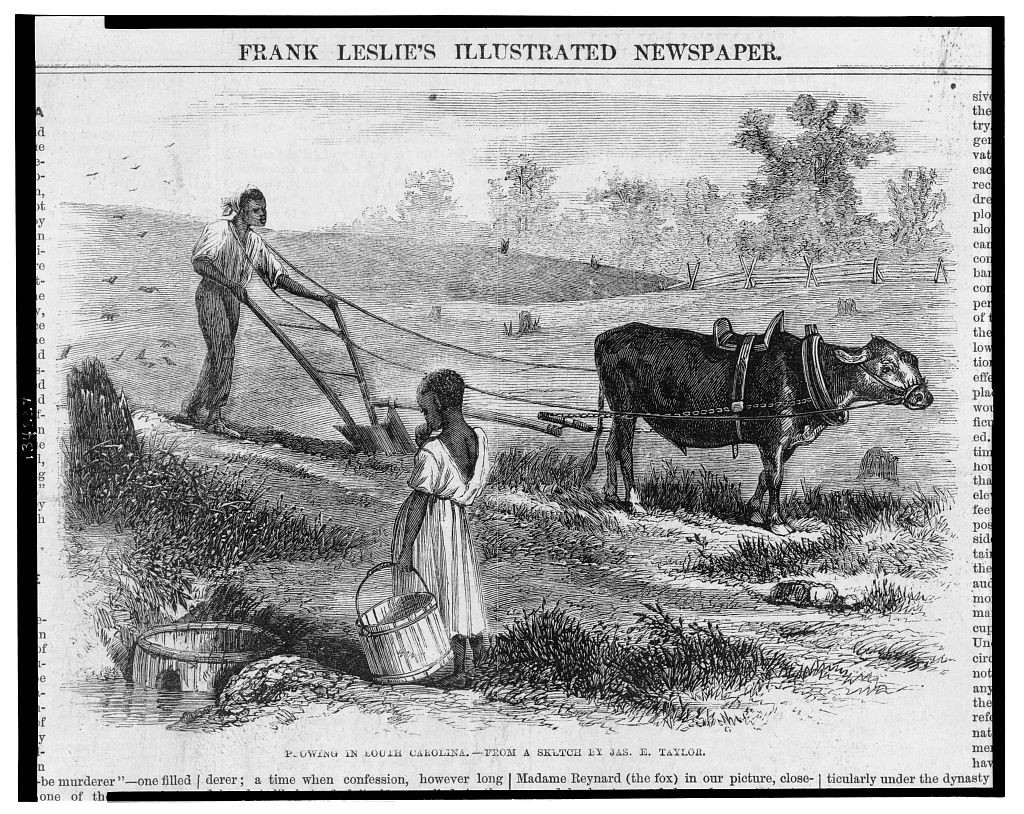 Plowing in South Carolina / from a sketch by Jas. E. Taylor. ( Illus. in: Frank Leslie's illustrated newspaper, v. 23, no. 577 (1866 October 20), p. 76. ; LOC: http://www.loc.gov/item/2004669782/)