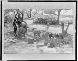 The camp blacksmith at Casas Grandes, Mexico (c1916.; LOC: https://www.loc.gov/item/95508689/)