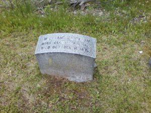 William Johnson gravestone Restvale Cemetery, Seneca Falls, NY 5-15-2016