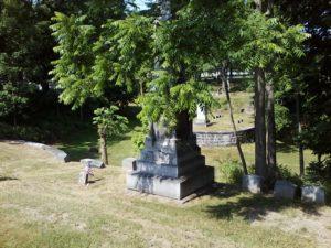Johnson family plot, Restvale cemetery, Seneca Falls, NY 6-26-2016
