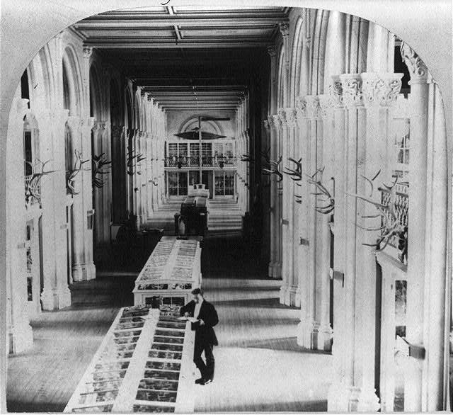 Interior of the Smithsonian Institution, Washington, D.C., showing exhibit cases (1867; LOC: https://www.loc.gov/item/2005680852/)
