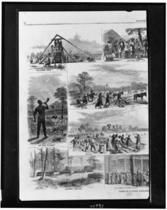 Scenes on a cotton plantation / sketched by A.R. Waud. left ( Illus. in: Harper's weekly, 1867 Feb. 2, pp. 72-73. ; LOC: https://www.loc.gov/item/96513748/)
