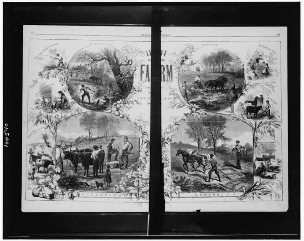 Life on the farm / drawn by Herrick, 1867. ( Illus. in: Harper's weekly, 1867 August 10, pp. 504-505. ; LOC: https://www.loc.gov/item/90712907/)