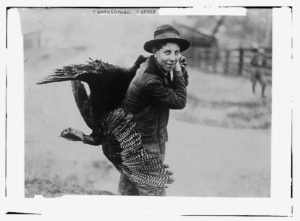 Thanksgiving turkey ([between ca. 1910 and ca. 1915; LOC: https://www.loc.gov/item/ggb2005011260/)