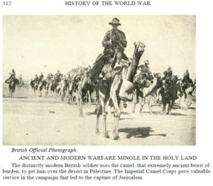 camels (History of the World War (http://www.gutenberg.org/cache/epub/18993/pg18993-images.html)